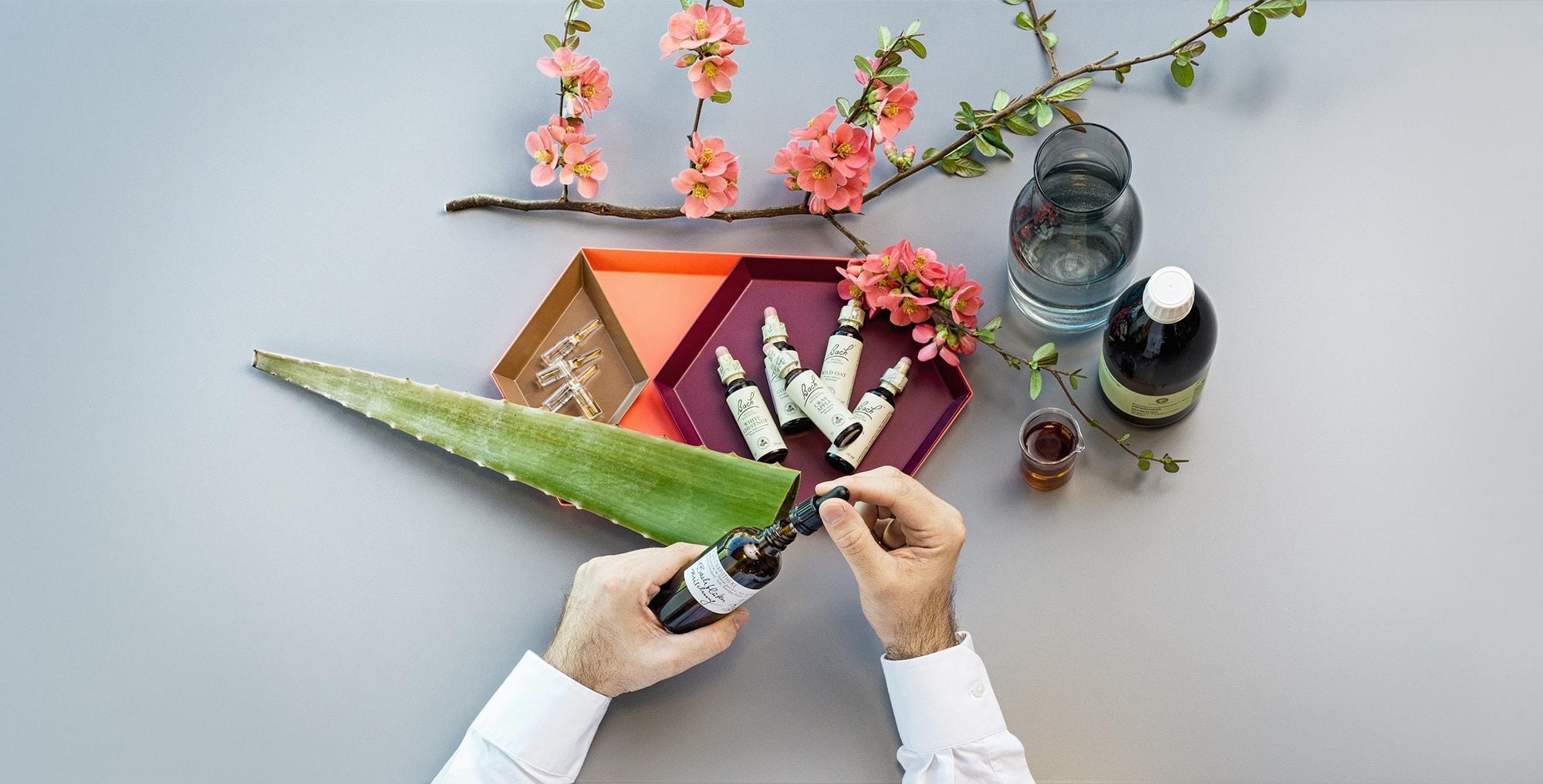 Aromatherapie & Bachblüten, Handwerk, Impressionen,