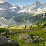 NEU: Die Kraft der Alpen - Lärchenharz Salbe !