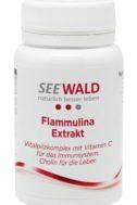 Flammulina Extrakt
